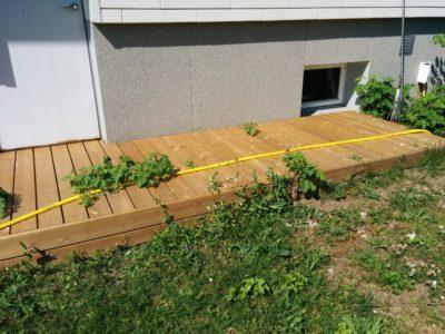 Vaarikas kasvab terrassist läbi